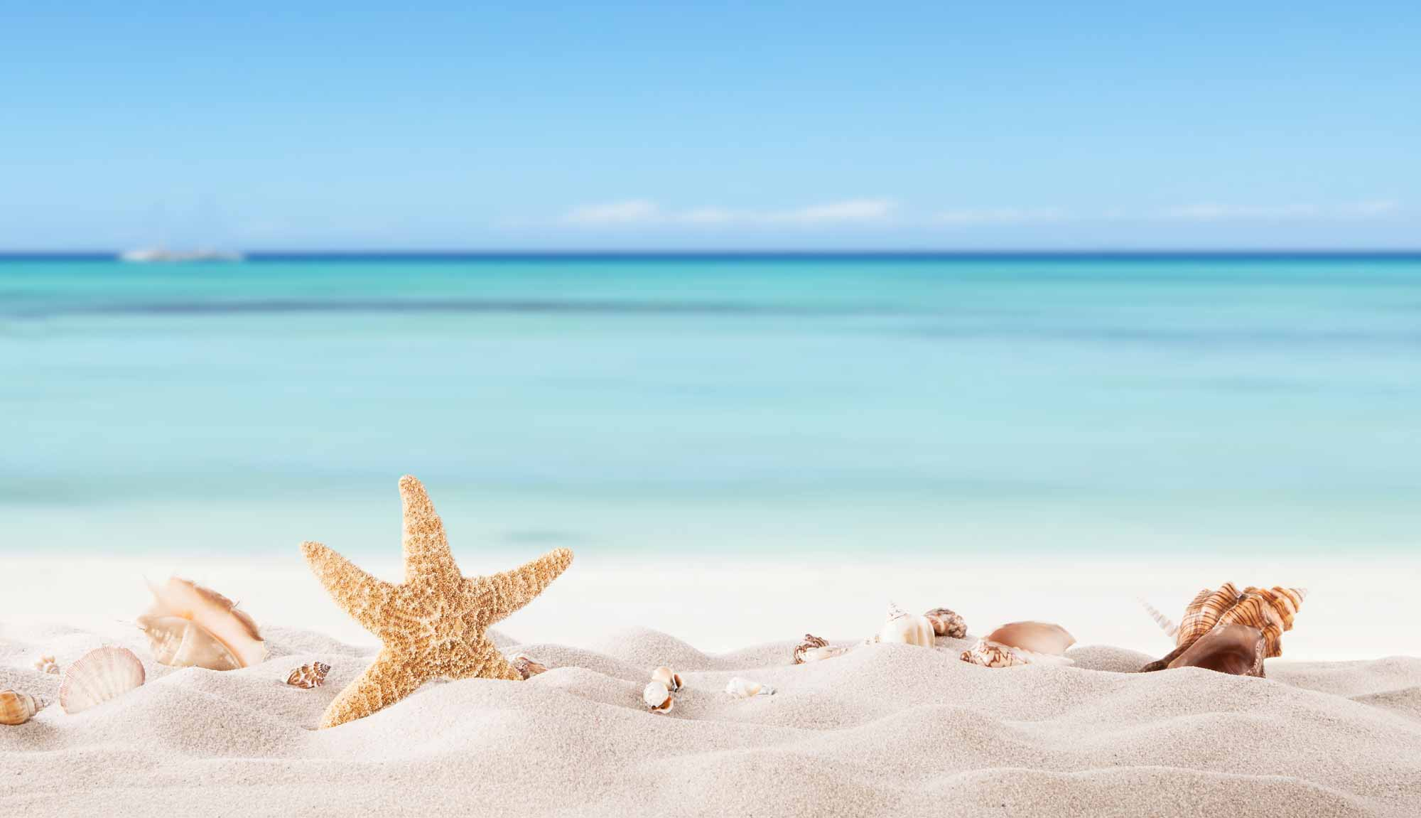 Bright blue sea with a starfish in the sand